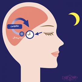 ملاتونین هورمون تاثیرگذار در کاهش سطح بی خوابی و مهمترین جایگزین ها