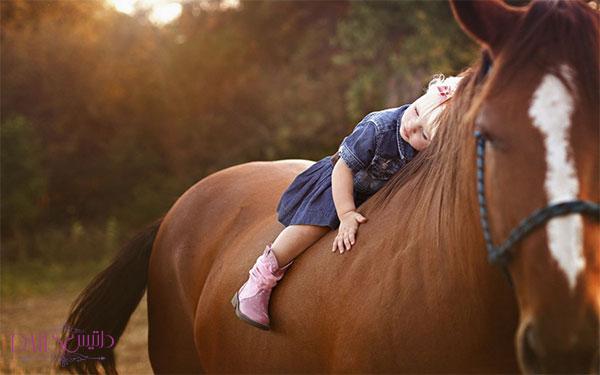 تهیه موی اسب