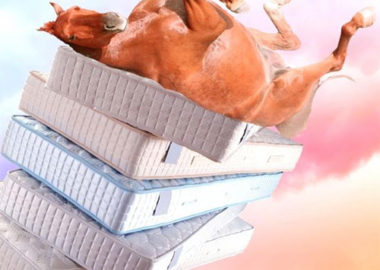 موی اسب چه مزایایی دارد که در تولید تشک های لوکس بکار می رود؟